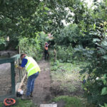 Taking down the old fencing and trees