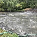Draining the pond - Norfolk