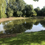 Pond completely cleared and refilled - Norfolk