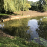 Completed pond cleaning - Norfolk
