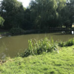 Completed pond cleaning 4 - Norfolk
