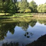 Silt and sludge removal complete - Norfolk