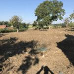 Digging over field 2 - Norfolk