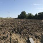 Field dug over - Norfolk