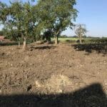 Field dug over 2 - Norfolk