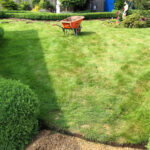 Before artificial grass - Thorpe, Norwich