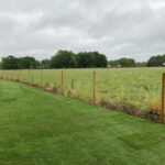 New turf and stock fencing installed 2 - Norwich
